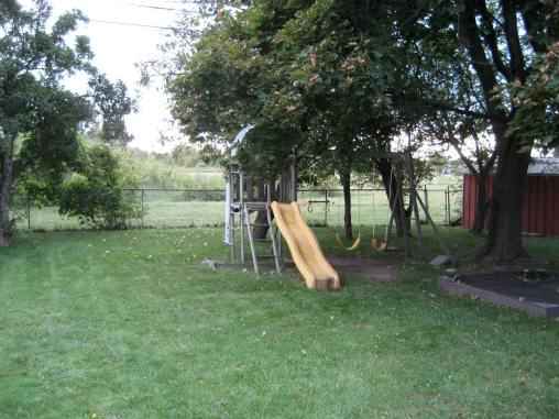 Our old swing set and backyard. This is only half of it! It was so big!